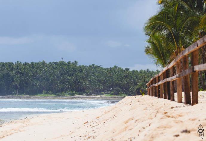 pacifico siargao beach