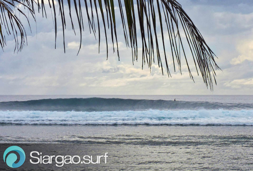 pacifico siargao surfing