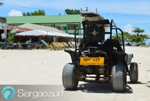surf buggy